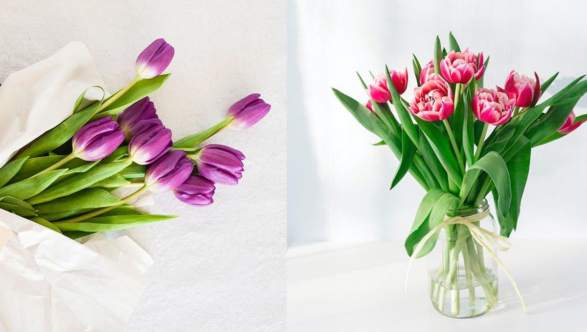 Smart prei: Soleiðis fært tú tulipanur at halda leingi