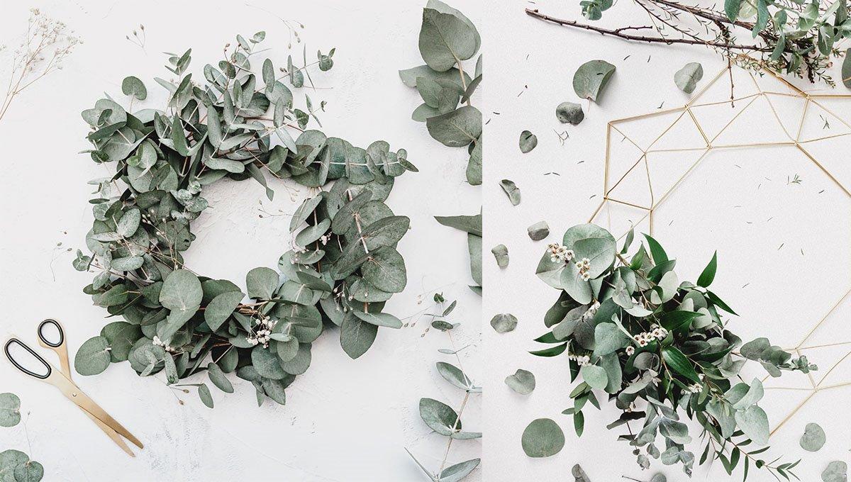 Ger ein vakran krans av evkalyptus